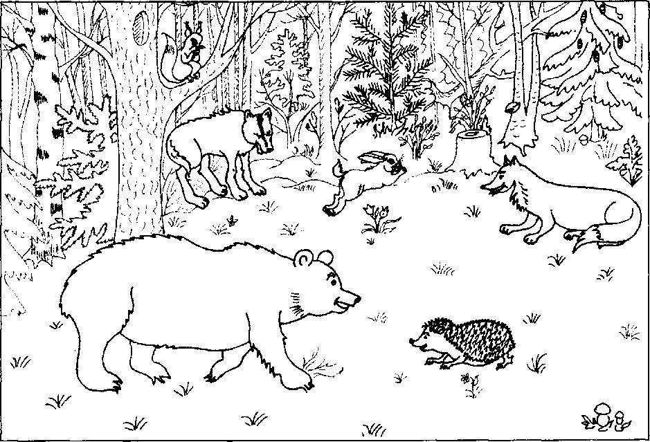 Дикие животные наших лесов раскраски для детей