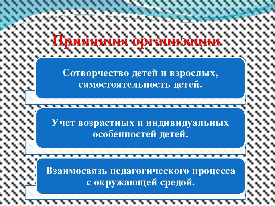 Принципы организации