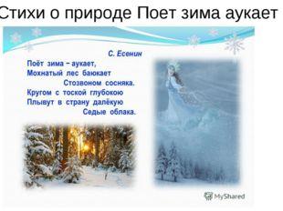Стихи о природе Поет зима аукает