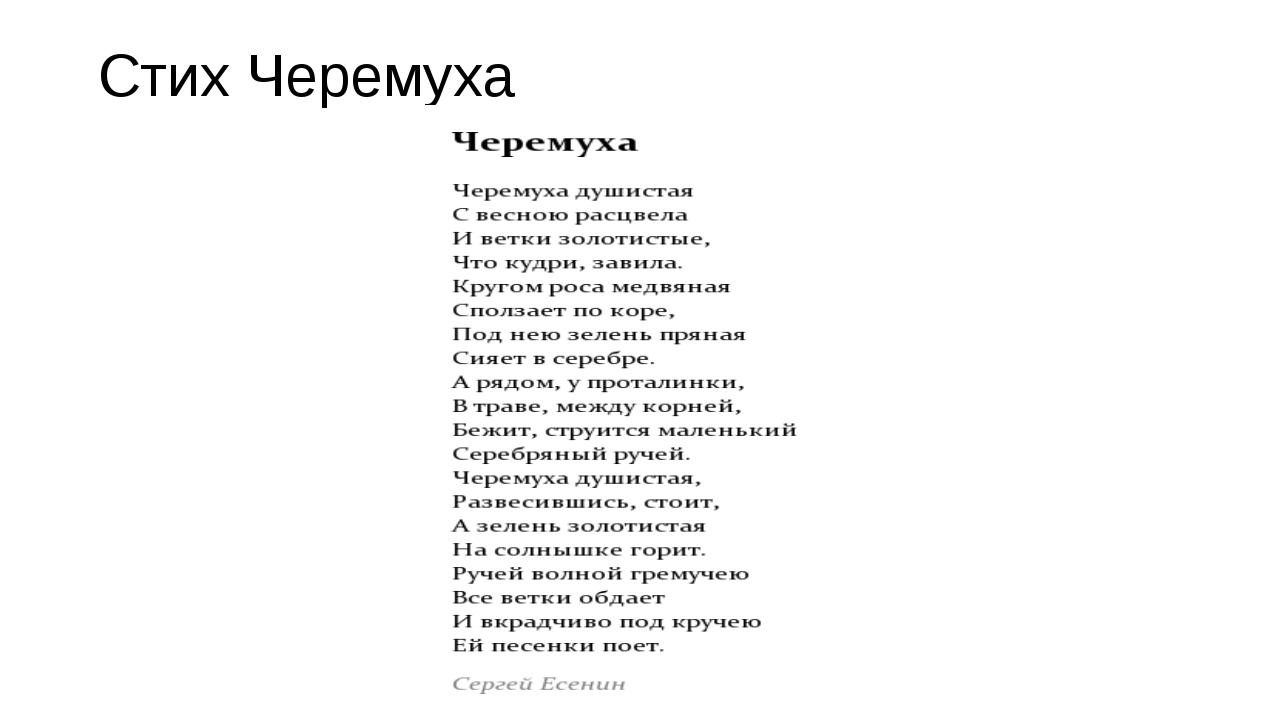 Стих сергея есенина черёмуха
