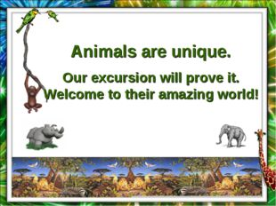 Animals are unique. Our excursion will prove it. Welcome to their amazing wor
