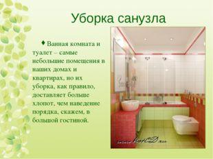 Уборка санузла Ванная комната и туалет – самые небольшие помещения в наших до