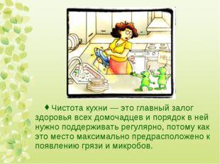 Чистота кухни — это главный залог здоровья всех домочадцев и порядок в ней ну
