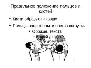 Правильное положение пальцев и кистей Кисти образуют «ковш». Пальцы напряжены
