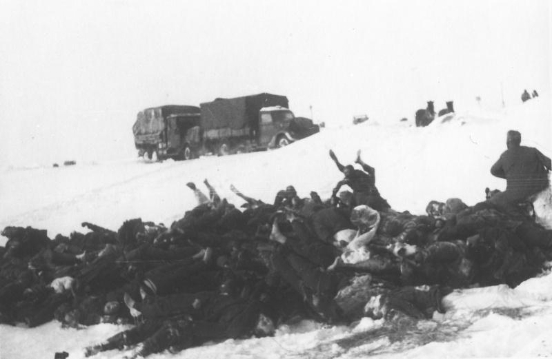 Груда тел погибших советских пленных в стороне от дороги