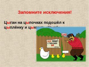 Цыган на цыпочках подошёл к цыплёнку и цыкнул: «Цыц!» Запомните исключения!
