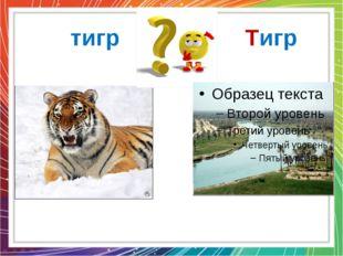 тигр Тигр