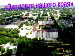 Авторы работы:  ученицы 11 класса Чуднова Виктория Саркисян Диана