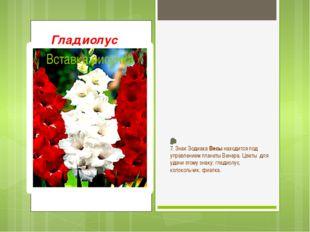 Вонзая в небо цветоносный колос, На стыке лета с осенью цветёт Красавец благо