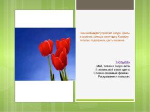 Знаком Козерог управляет Сатурн. Цветы и растения, которые несут удачу Козер