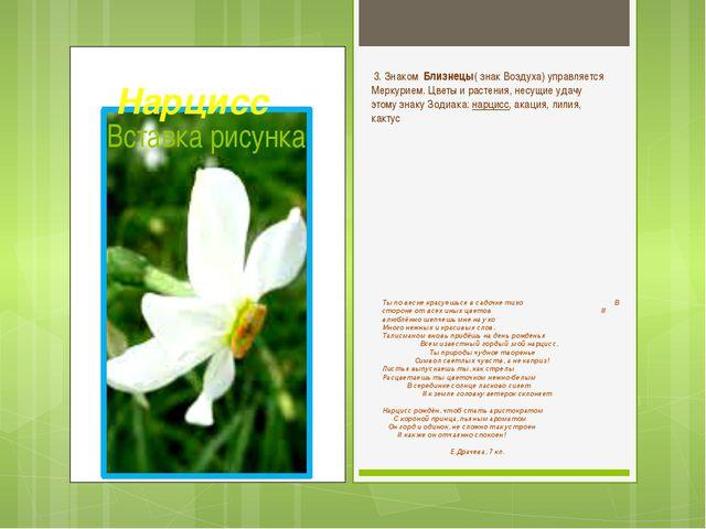 Ты по весне красуешься в садочке тихо В стороне от всех иных цветов И влюблён...