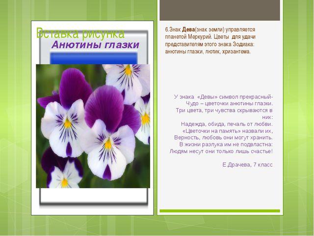 У знака «Девы» символ прекрасный- Чудо – цветочки анютины глазки. Три цвета,...