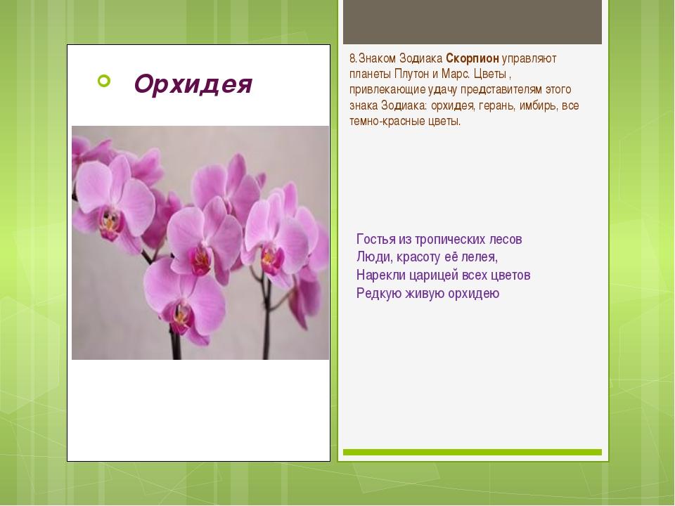 Уход он подходит зодиака каким знаком орхидея