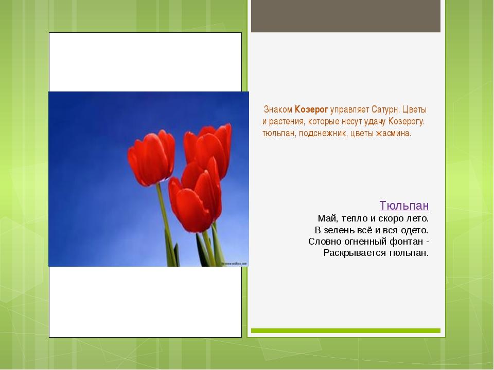 Знаком Козерог управляет Сатурн. Цветы и растения, которые несут удачу Козер...