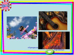 «Крылатые качели» «Песня Красной шапочки» «Песня о весёлом ветре» «Прекрасное