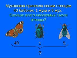 Мухоловка принесла своим птенцам 40 бабочек, 1 жука и 5 мух. Сколько всего на