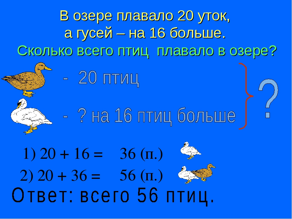 В озере плавало 20 уток, а гусей – на 16 больше. Сколько всего птиц плавало в...