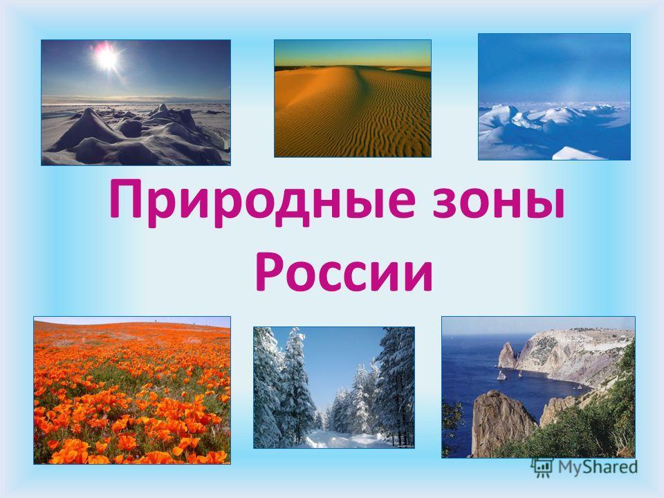 http://misvefimec.science/pic-images.myshared.ru/6/602742/slide_1.jpg