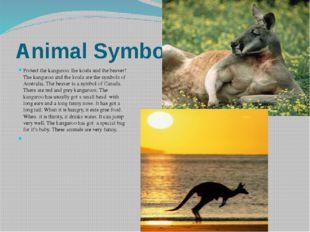 Animal Symbols Protect the kangaroo, the koala and the beaver! The kangaroo a