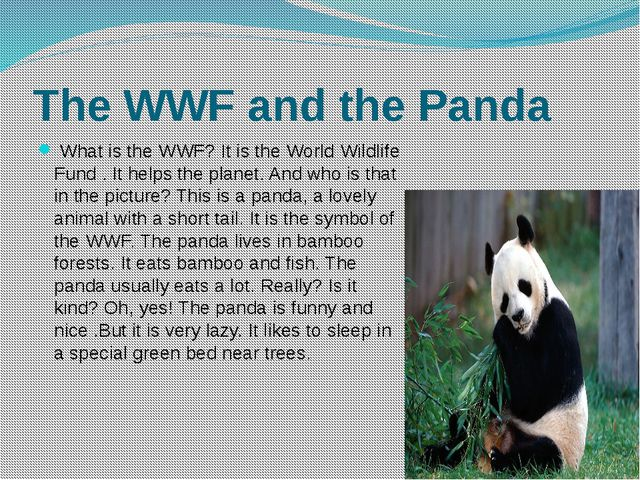 The WWF and the Panda What is the WWF? It is the World Wildlife Fund . It hel...