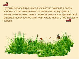 Русский человек прошлых дней охотно заменял словом «сорок» слова «очень много