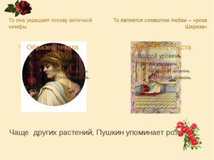 Чаще других растений, Пушкин упоминает розу. То она украшает голову античной
