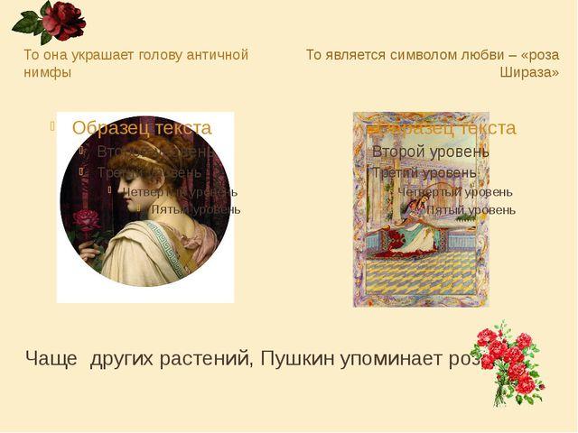 Чаще других растений, Пушкин упоминает розу. То она украшает голову античной...