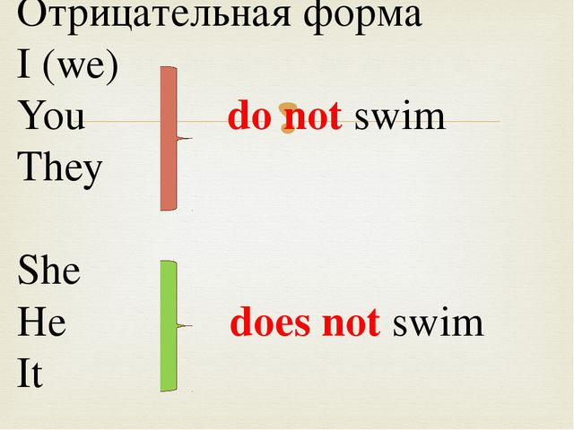 Отрицательная форма I (we) You do not swim They She He does not swim It 