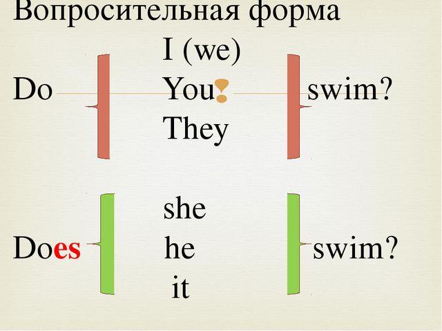 Вопросительная форма I (we) Do You swim? They she Does he swim? it 