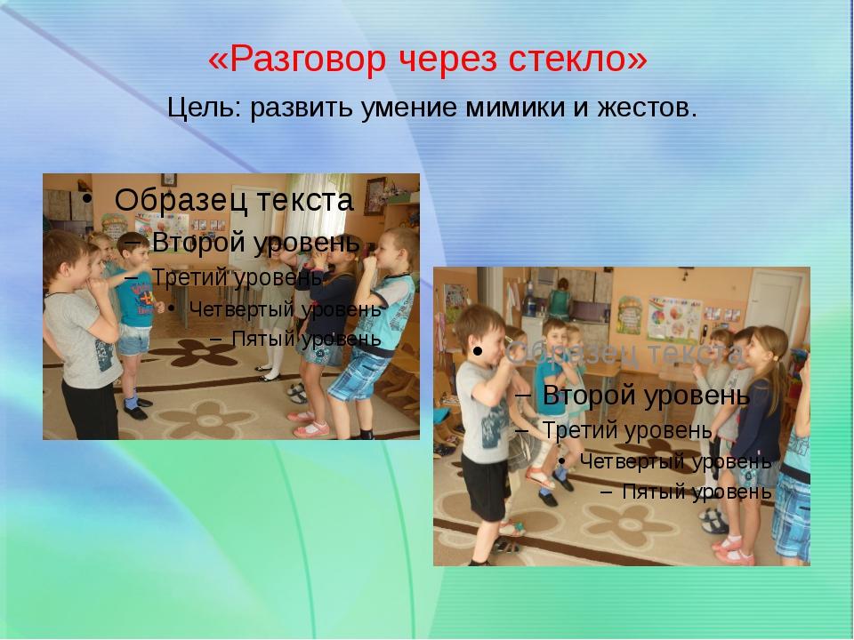 «Разговор через стекло» Цель: развить умение мимики и жестов.
