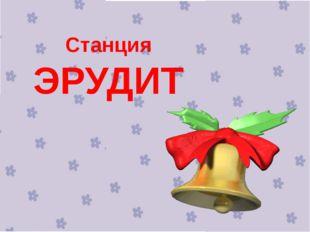 Станция ЭРУДИТ