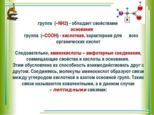 группа (–NH2) - обладает свойствами основания группа (–COOH)- кислотная,