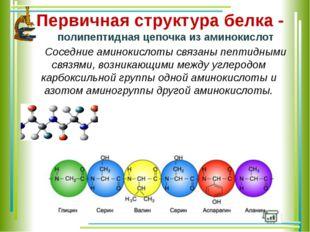 Первичная структура белка - полипептидная цепочка из аминокислот Соседние