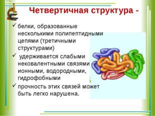 Четвертичная структура - белки, образованные несколькими полипептидными цепям