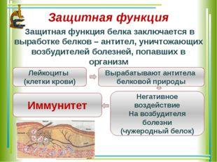 Защитная функция Защитная функция белка заключается в выработке белков – анти