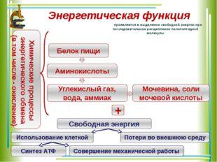 Энергетическая функция проявляется в выделении свободной энергии при последов