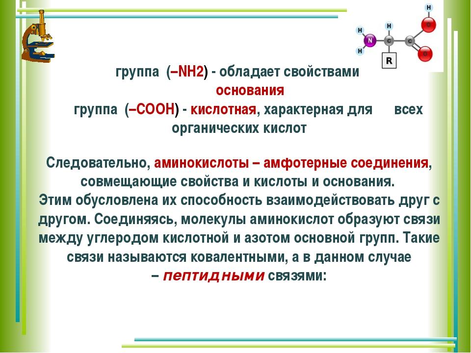 группа (–NH2) - обладает свойствами основания группа (–COOH)- кислотная,...