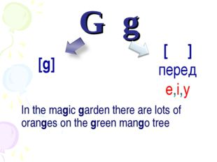 G	g 	In the magic garden there are lots of oranges on the green mango tree [ʤ