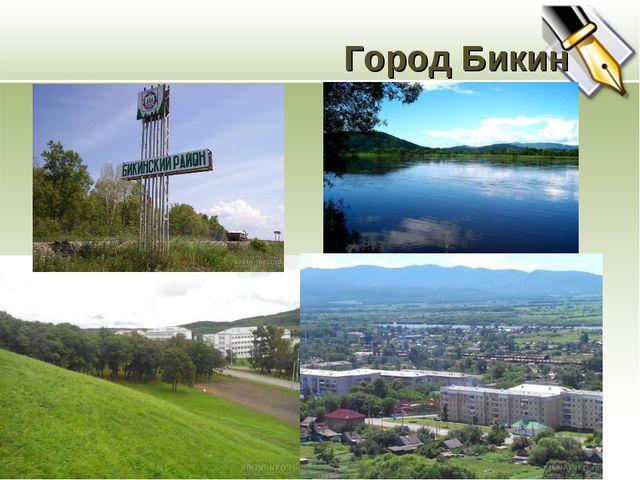 Город Бикин