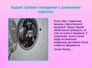 Кодекс правил поведения с домашним хорьком Если у Вас стиральная машина с фро