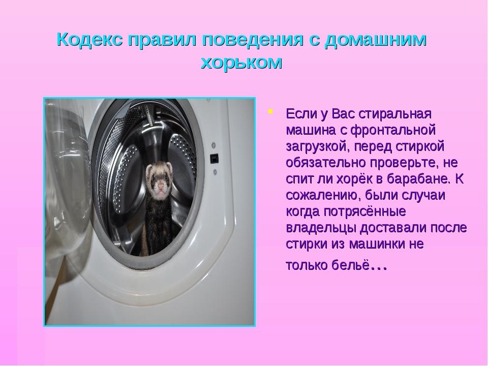 Кодекс правил поведения с домашним хорьком Если у Вас стиральная машина с фро...
