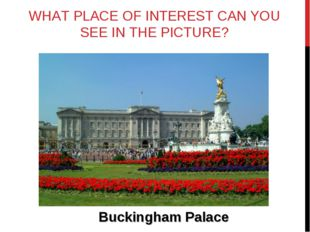 WHAT PLACE OF INTEREST CAN YOU SEE IN THE PICTURE? Buckingham Palace