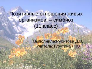 Позитивные отношения живых организмов – симбиоз (11 класс) Выполнила:Рубизова