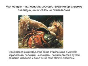 Кооперация – полезность сосуществования организмов очевидна, но их связь не о