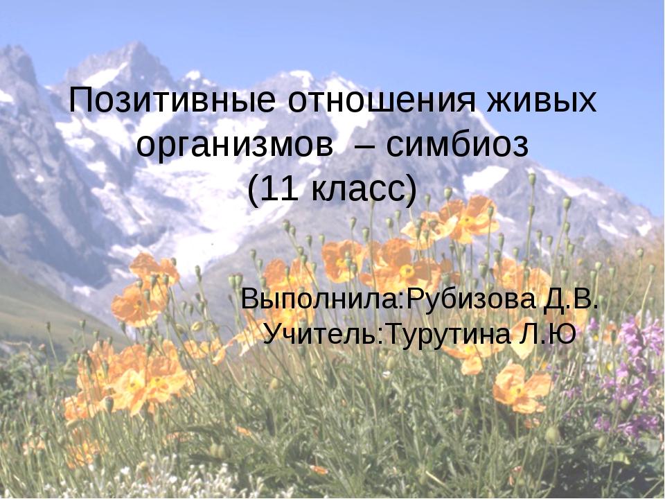 Позитивные отношения живых организмов – симбиоз (11 класс) Выполнила:Рубизова...
