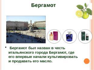 Бергамот Бергамот был назван в честь итальянского города Бергамот, где его вп