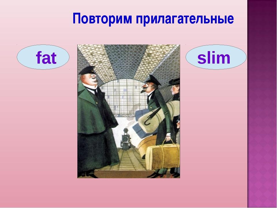 Повторим прилагательные fat slim