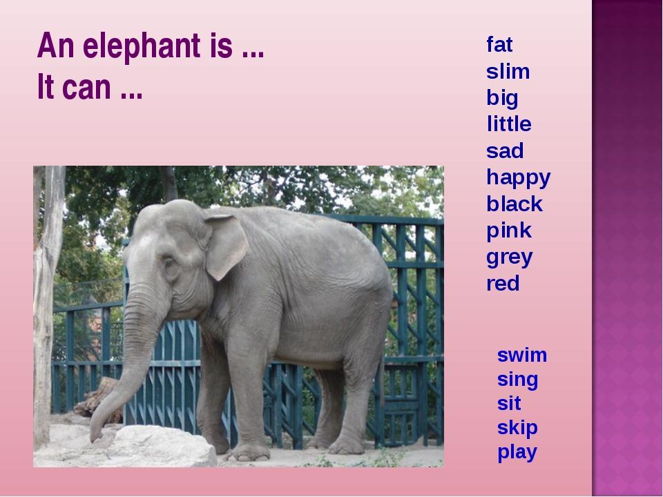 An elephant is ... It can ... fat slim big little sad happy black pink grey r...
