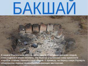 В нашем Учалинском районе обнаружено 44 стоянки древних людей, относящихся к