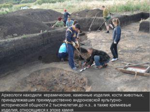 Археологи находили керамические, каменные изделия, кости животных, принадлежа